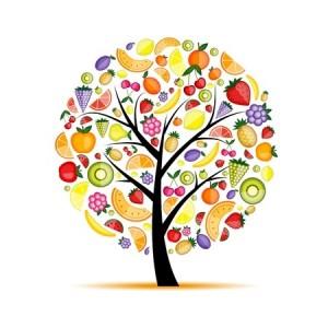 energy fruit tree
