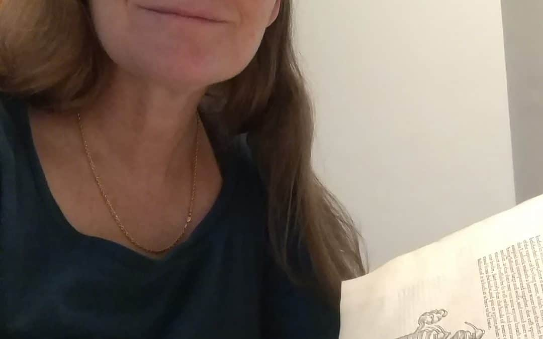 1-28-20 Laura Angotti, MeadCon Keynote – the history of mead and historic recipes