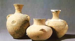 9,000-year History Of Chinese Fermented Beverages Confirmed