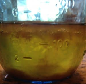 Ancient Mead Making Meets Modern Science Part 2: Isolating a Pure Yeast from a Wild Honey Culture (Honey Bug)